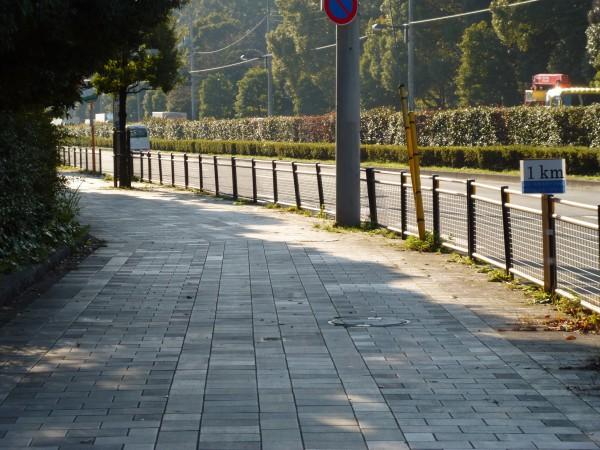 品川・大井スポーツの森大会 1km地点の画像
